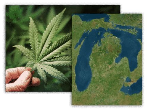 about-cannabis-property-brokers